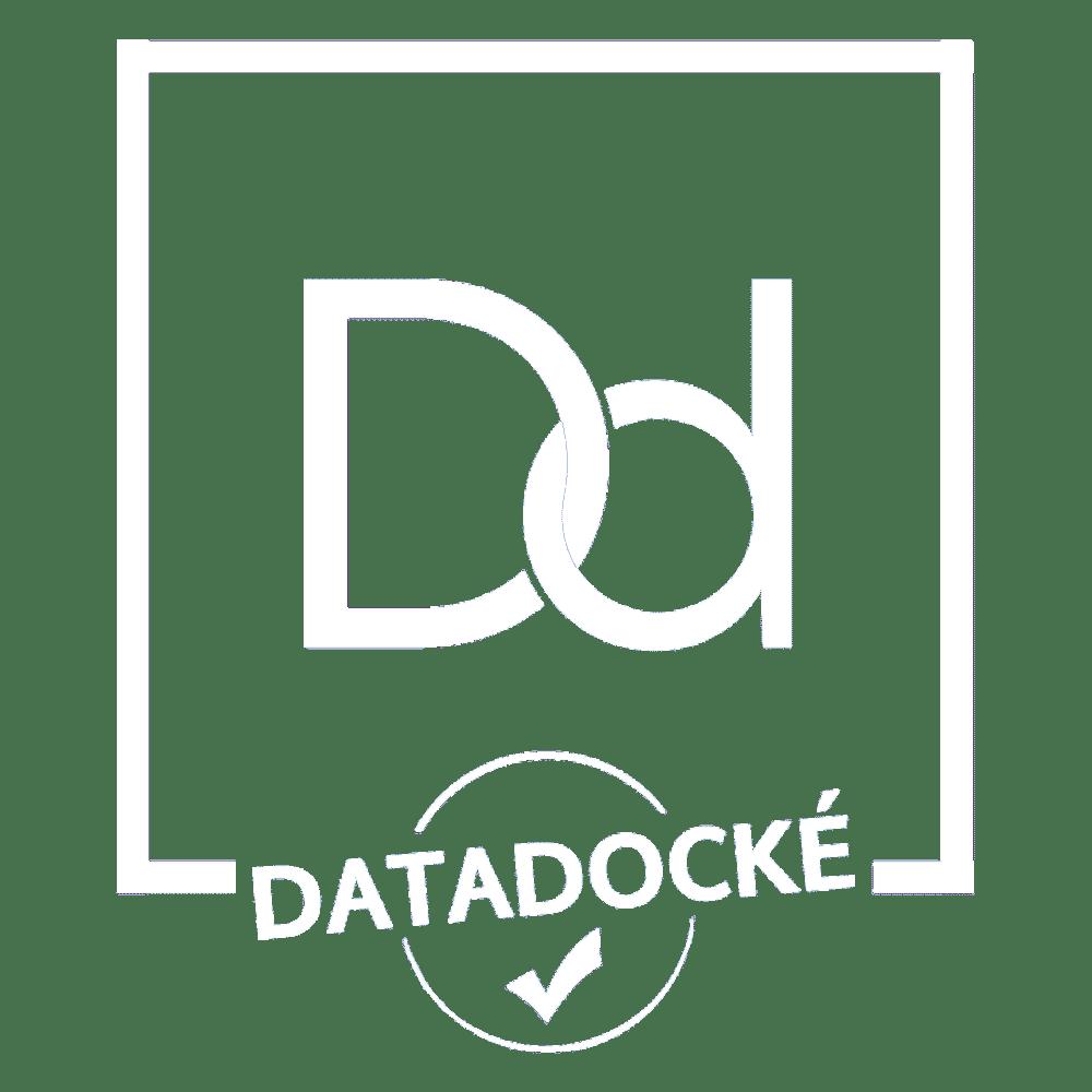 Brain Ball Data-Dock